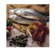 Wild Fish and Seafood